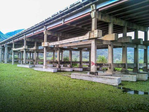 Refuerzo sismorresistente del Viaducto La Cabrera, Autopista Regional del Centro